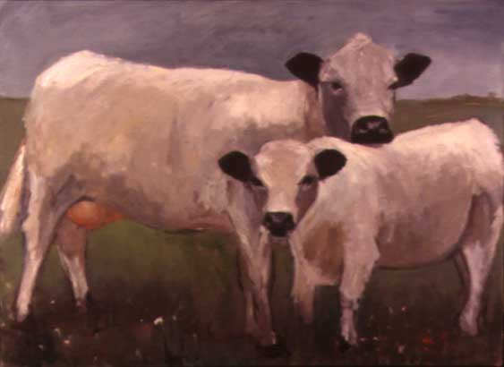 Two Swiss Cows